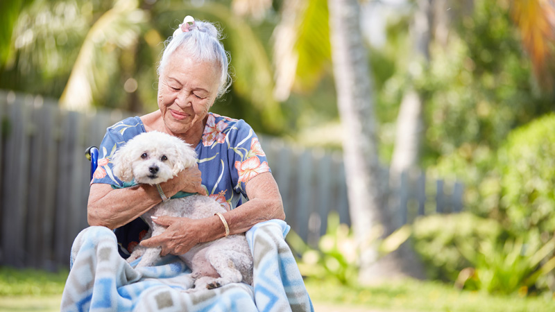 Navian Hospice Hawaii complementary pet therapy